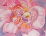 Gratitude Pink Rose