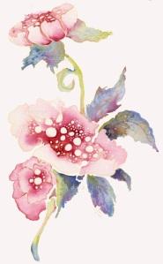 Pink Poppi, LizDesign